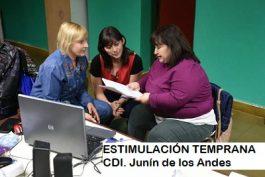 Módulo II. Etapa de 12 a 3 años. «CDI Burbujitas»